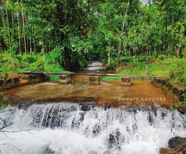 Fresh Brook flowing near Kodachadri Base Point