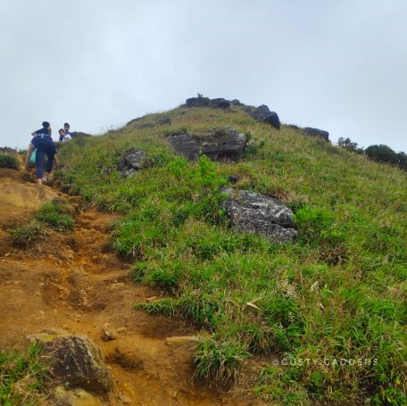 Trails of Tadiandamol
