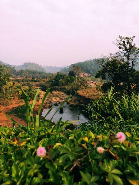 Balgal River Homestay