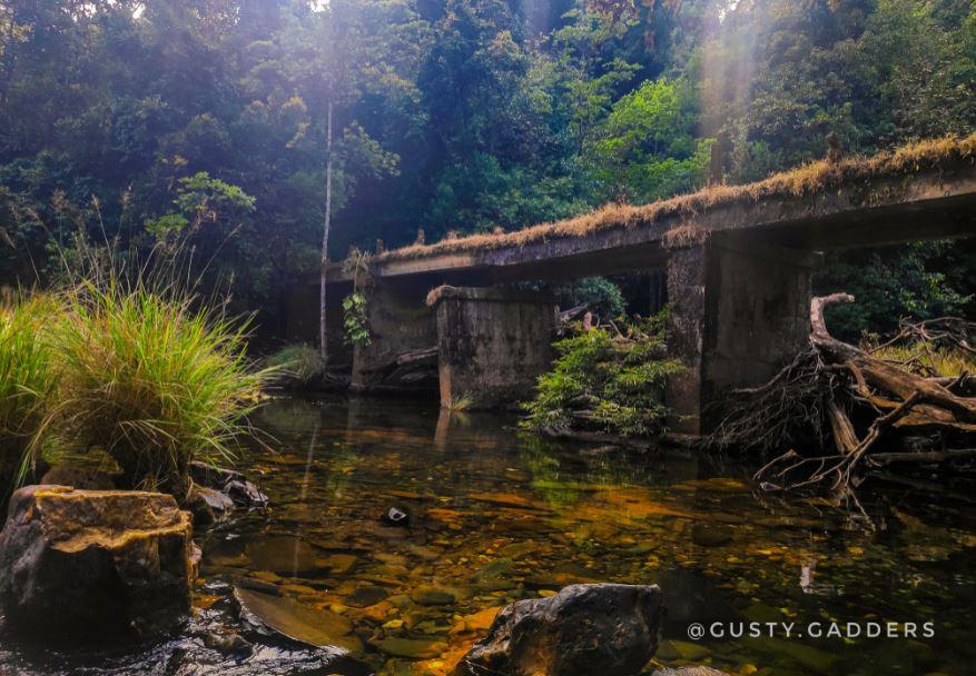 A brook flowing at the foothills of Kurinjal Peak