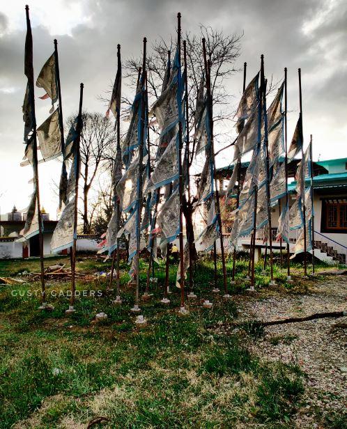 Tsering Jong Monastery in Bir Billing