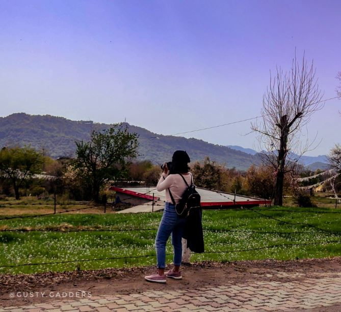 A girl clicking landscape picture
