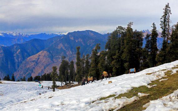 Top 12 Winter Treks in India: Easy Yet Challenging