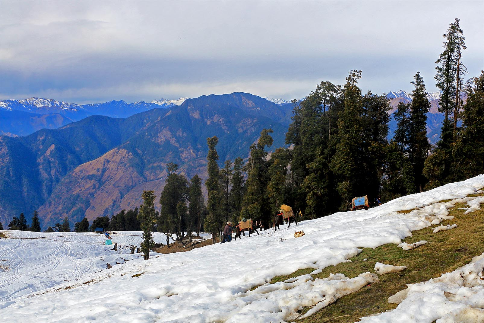 Top 12 Winter Treks in India: Easy Yet Challenging